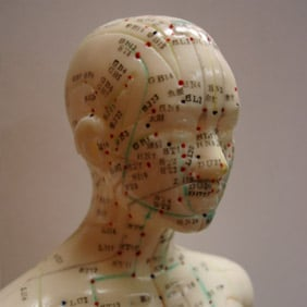 doll used to demonstrate acupuncture